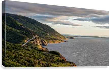 Summer on the Cabot Trail  Canvas Print