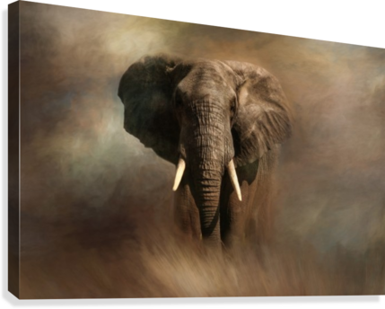 AFRICAN ELEPHANT MICHEL SOUCY  Canvas Print