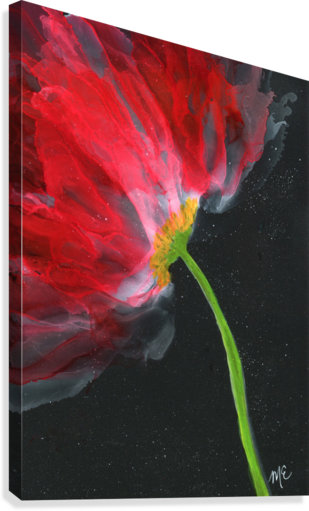 Fantastical Flower  Canvas Print