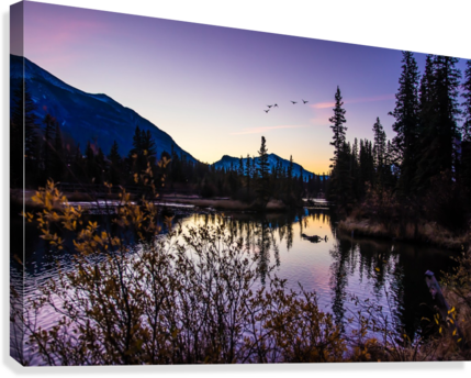 As Ducks Fly Policemans Creek Canmore  Canvas Print