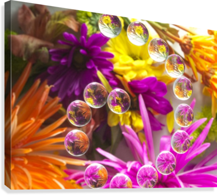 FLOWERS REFRACTION 13  Canvas Print