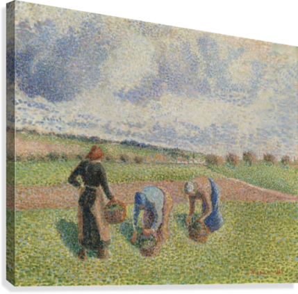 Peasants Gathering Herbs, Eragny  Canvas Print