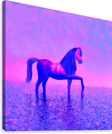 lonely horse  Canvas Print