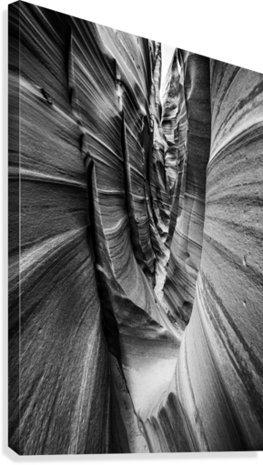 B&W Zebra Slot Canyon II  Canvas Print