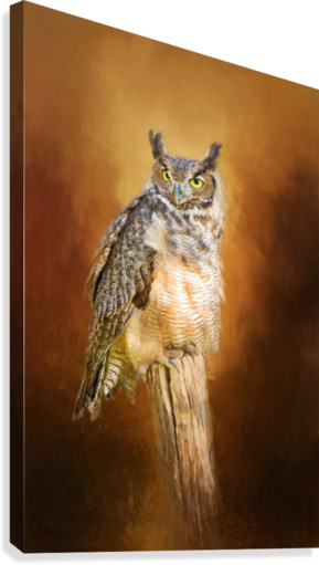 Great Horned Owl In Autumn  Canvas Print