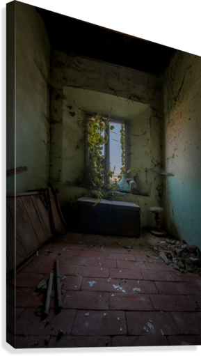 Abandoned Chest  Canvas Print