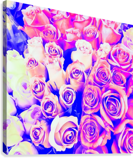 bouquet of roses texture pattern abstract in pink and purple  Canvas Print