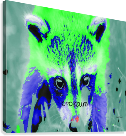 abstract Opossum  Canvas Print
