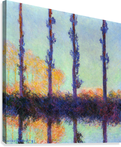 Four poplars by Monet  Canvas Print