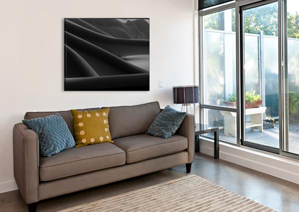 FOOTPRINT & HIDDEN BUSHES 1X  Canvas Print
