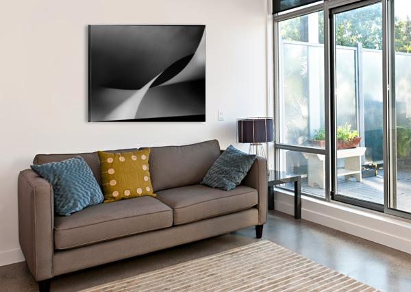 MIT SCHWUNG 1X  Canvas Print