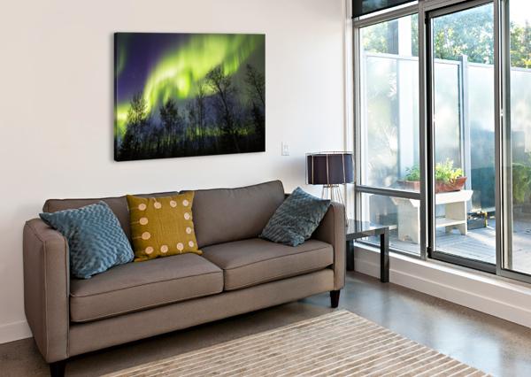 AURORA BOREALIS OVER SILHOUETTED TREES; ALASKA, UNITED STATES OF AMERICA PACIFICSTOCK  Canvas Print