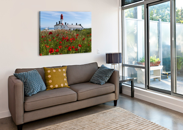 SOUTER LIGHTHOUSE WITH A FIELD OF RED POPPIES IN THE FOREGROUND; SOUTH SHIELDS, TYNE AND WEAR, ENGLAND PACIFICSTOCK  Canvas Print
