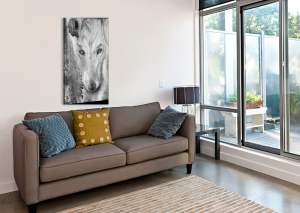 ILLUSTRATION OF A WOLF AND A MOTTLED BACKGROUND PACIFICSTOCK  Canvas Print