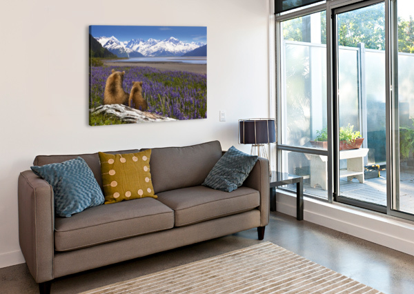 COMPOSITE: GRIZZLY SOW & CUB SIT IN LUPINE ALONG SEWARD HIGHWAY, TURNAGAIN ARM, SOUTHCENTRAL ALASKA PACIFICSTOCK  Canvas Print