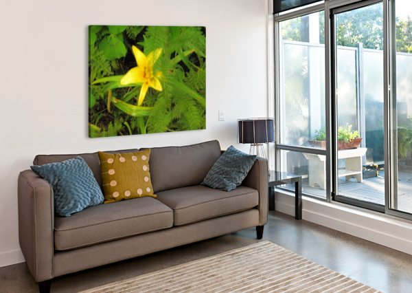 YELLOW FLOWER ARIZONA PHOTOS BY JYM  Canvas Print