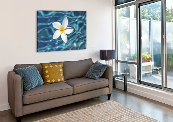 PLUMERIA FLOWER FLOATING IN CLEAR BLUE WATER. PACIFICSTOCK  Canvas Print