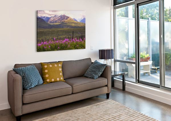 VIEW OF THE CHUGACH MOUNTAINS WITH FIREWEED IN THE FOREGROUND ALONG THE GLENN HIGHWAY, SOUTHCENTRAL ALASKA, SUMMER, HDR PACIFICSTOCK  Canvas Print