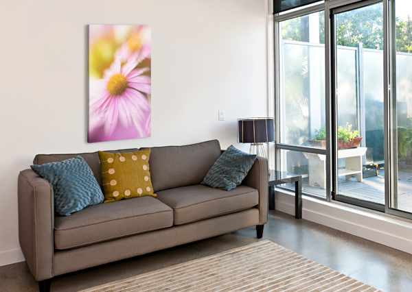 DREAMY PINK CONEFLOWER  SHARALEE ART  Canvas Print