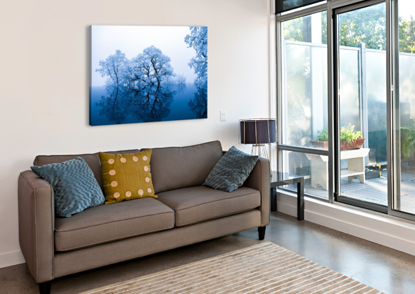 NATURE STOCK PHOTOGRAPHY  Canvas Print
