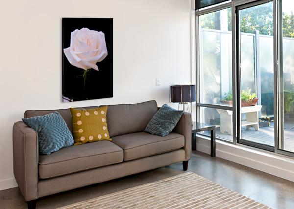 ROSE FOR BRIDE ALLA ARANOVSKAYA  Canvas Print