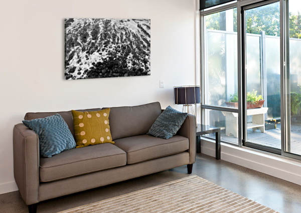 THE BEACH - OCEAN WAVES IN BLACK AND WHITE BENTIVOGLIO PHOTOGRAPHY  Canvas Print