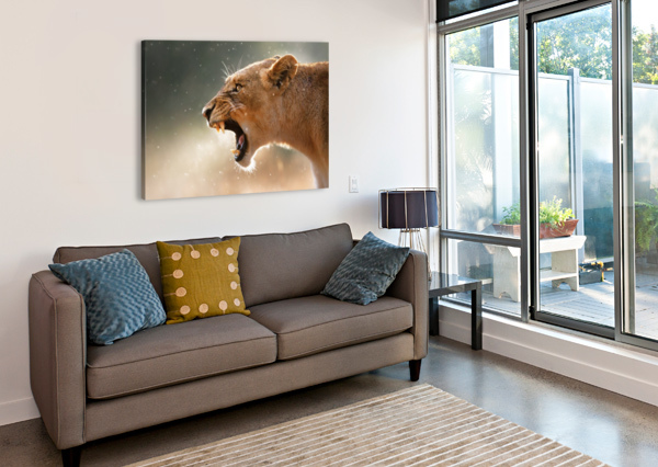 LIONESS IN THE RAIN JOHAN SWANEPOEL  Canvas Print
