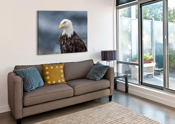 PORTRAIT OF AN EAGLE MICHEL SOUCY  Canvas Print