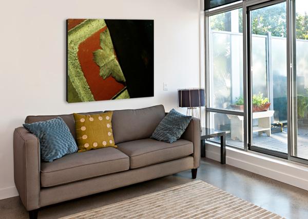 SOFN-4D749FB8 JESSE SCHILLING  Canvas Print