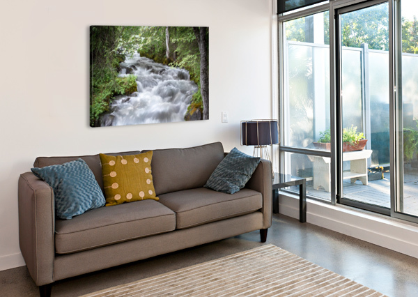 BEAUTIFUL WATERFALL PHOTOS - ALASKA 3QUARTERS IMAGES  Impression sur toile