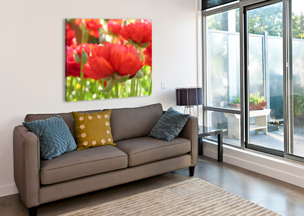 RED ROSE GARDEN PHOTOGRAPH KATHERINE LINDSEY PHOTOGRAPHY  Canvas Print
