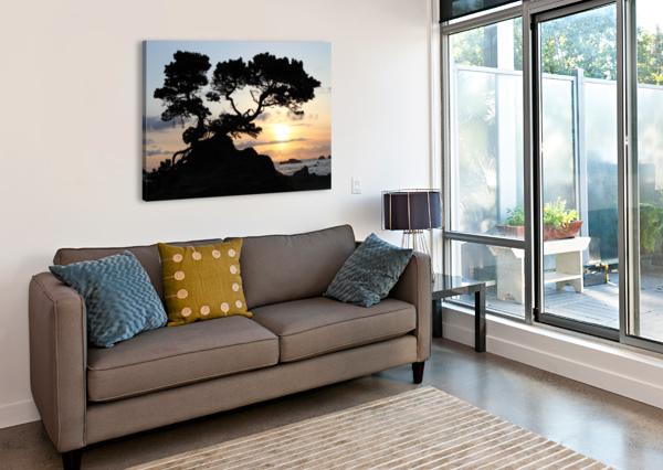 COASTAL SUNSET BEAR & BADGER  Canvas Print