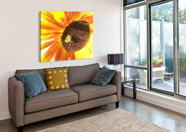 BUMBLEBEE ON SUNFLOWER BEAR & BADGER  Canvas Print