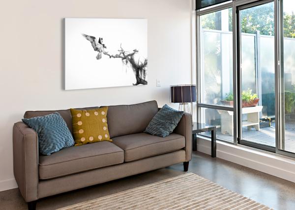 ON TOP OF THE WORLD JADUPONT PHOTO  Canvas Print