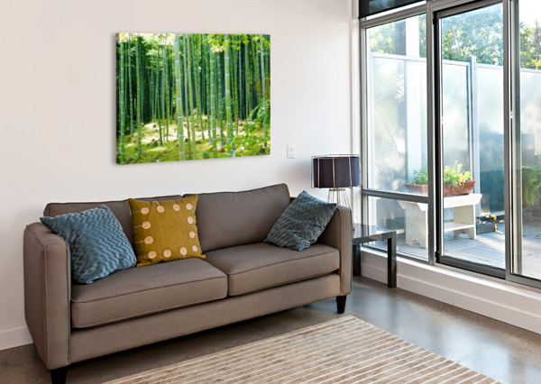 BAMBOO FOREST BEN CONWAY  Canvas Print