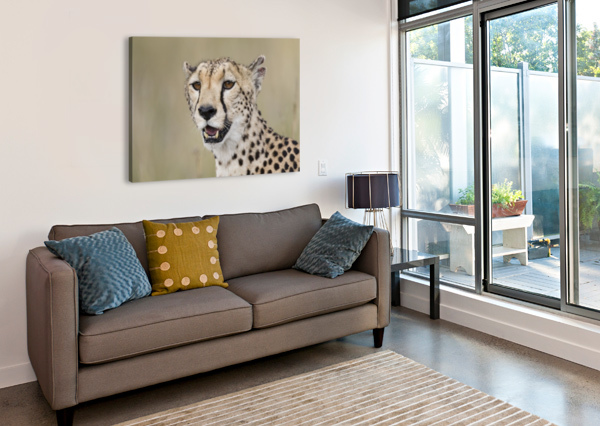 CHEETAH PORTRAIT BY WWW.JADUPONTPHOTO.COM JADUPONT PHOTO  Canvas Print