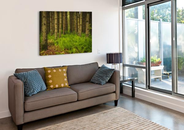 _S9A1813 MODIFIER JADUPONT PHOTO  Canvas Print