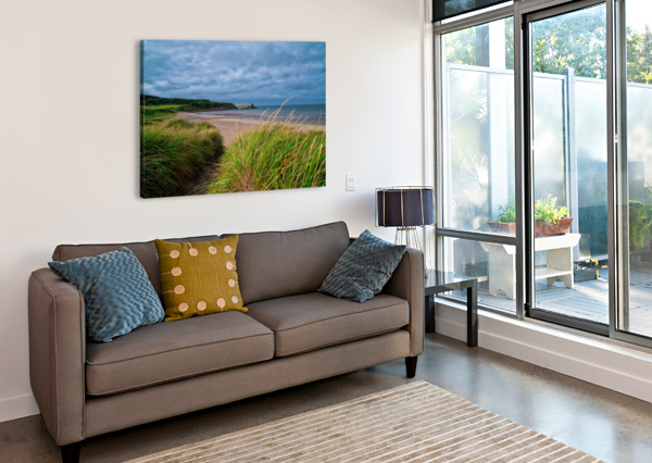 SAND AND GRASS MICHEL SOUCY  Canvas Print