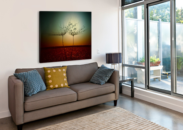 FIRE AND WATER 1X  Canvas Print