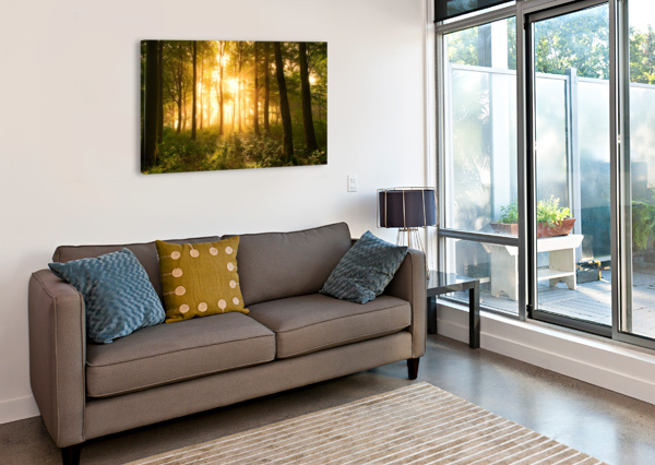 LIGHT IN THE FOREST. 1X  Canvas Print