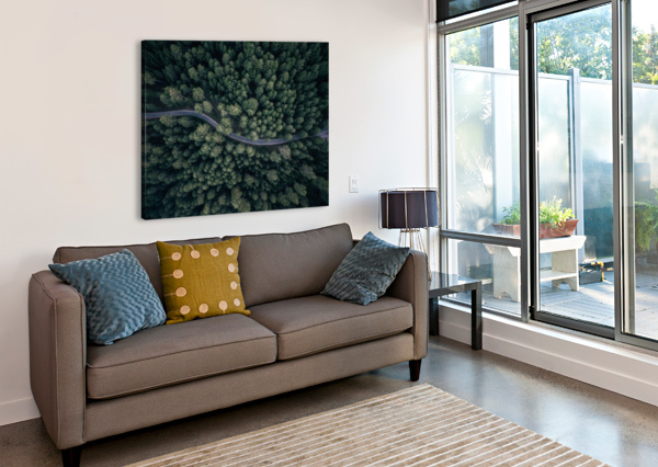 FROM ABOVE 1X  Canvas Print