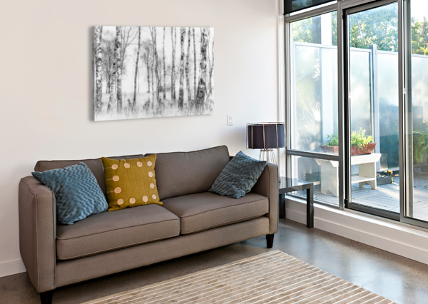 BLACK AND WHITE 1X  Canvas Print