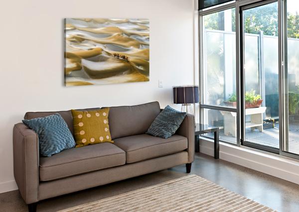 DESERT WINTER 1X  Canvas Print