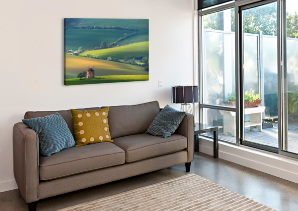 ABOUT FORMS & LINE'S 1X  Canvas Print