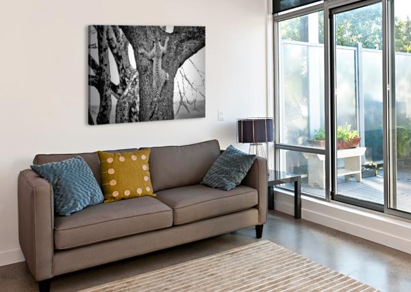 SPIDERMAN 1X  Canvas Print