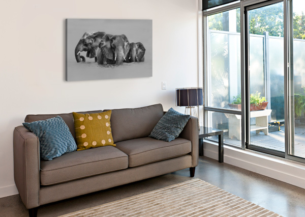 ELEPHANT CROSSING THE RIVER 1X  Canvas Print