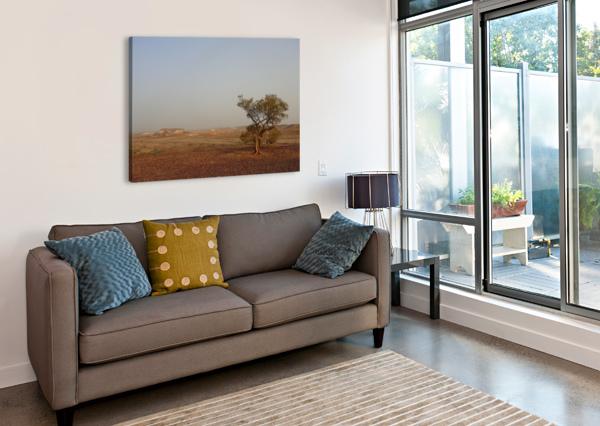 THE BREAKAWAYS SOUTH AUSTRALIA CEDANSBOITE  Canvas Print