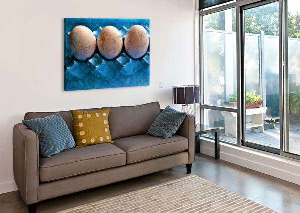 WORLDS MOST LIKED EGGS  - BY NEIL GAIRN ADAMS  NEIL GAIRN ADAMS  Canvas Print