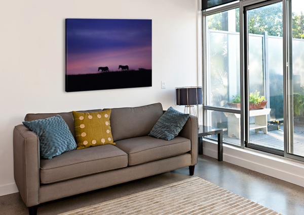 ZEBRA SUNRISE JADUPONT PHOTO  Canvas Print