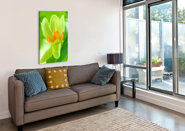 TULIP POPLAR FLOWER DEB OPPERMANN  Canvas Print